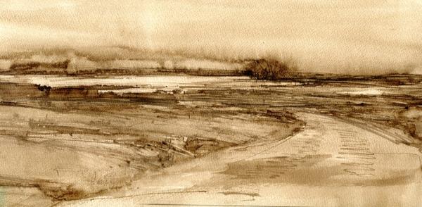 "Marsh road, Walnut ink, 19 X 9"""